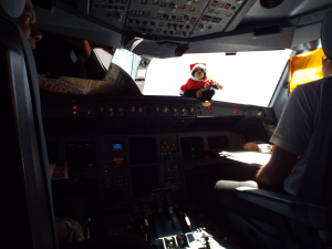 Ash cockpit